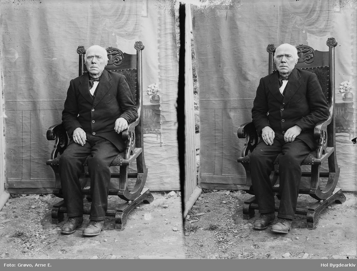 Portrett, mann, dress, stol, bakgrunnsteppe