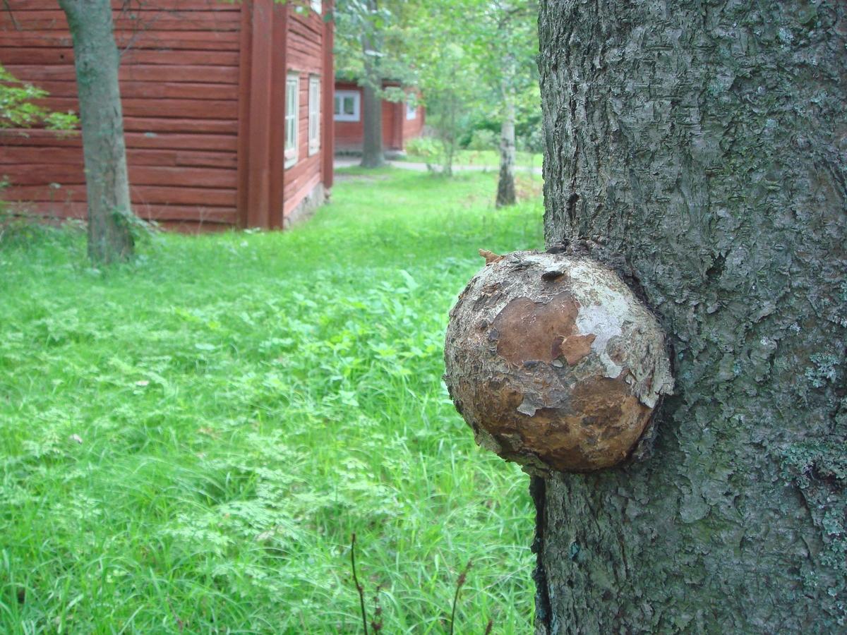 Träddekoration vid Bergsmansgården
