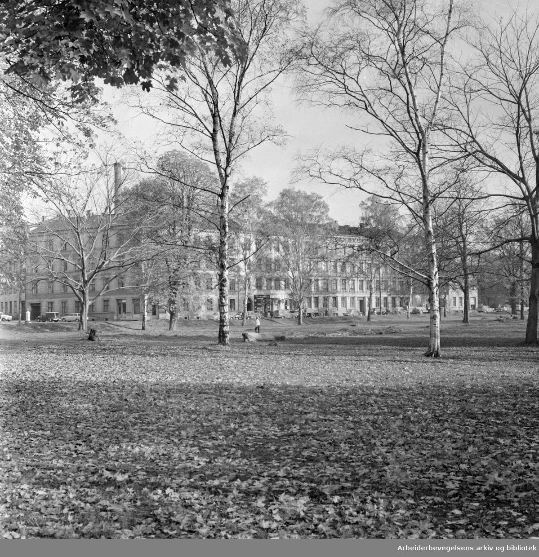 Sofienbergparken. Oktober 1963