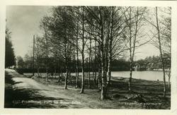 Fredrikstad, Vestsiden, Bjørndalen, første dam,  Bjørndal