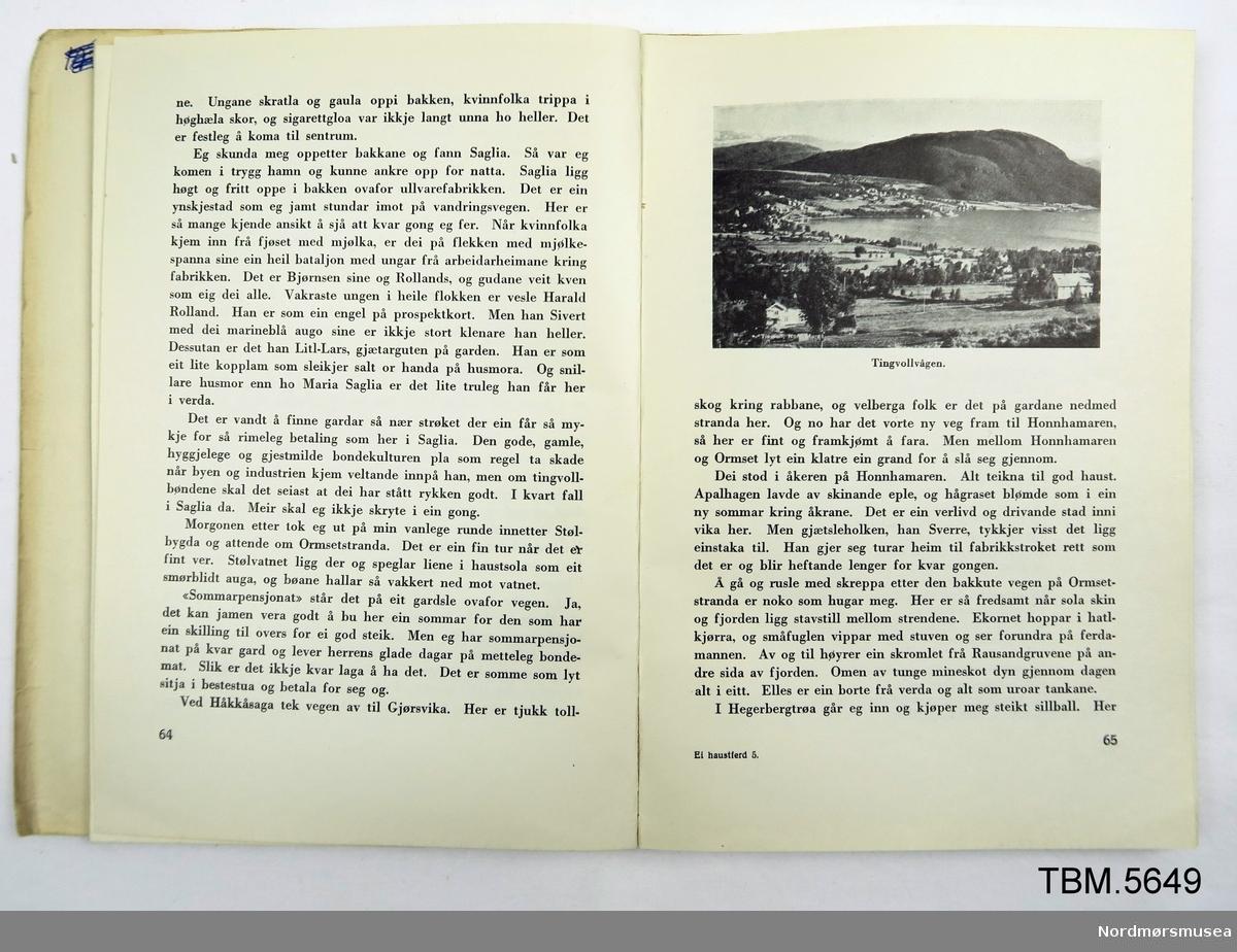 Bok med mjuk perm.På framsida er det bilete av ein mann på vandring i Nordmørsnatur. Dedikasjon frå Hans Hyldbakk til Erik og Magnhild Almhjell, 1955. 173 sider.