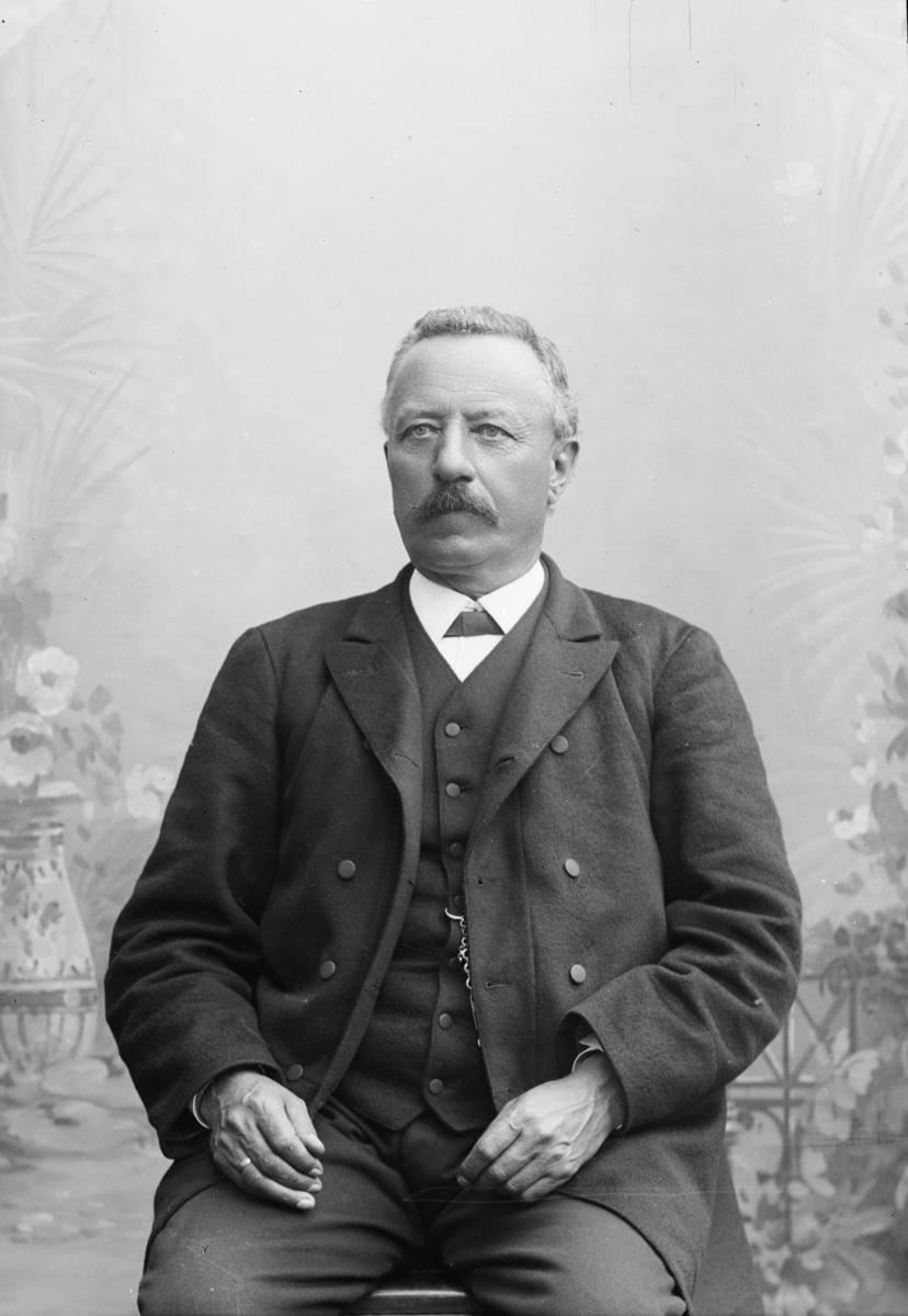 """Portrett av """"Lærer Th. Kolstad"""", som må være Tore Kolstad, født på Lesja i 1842."""