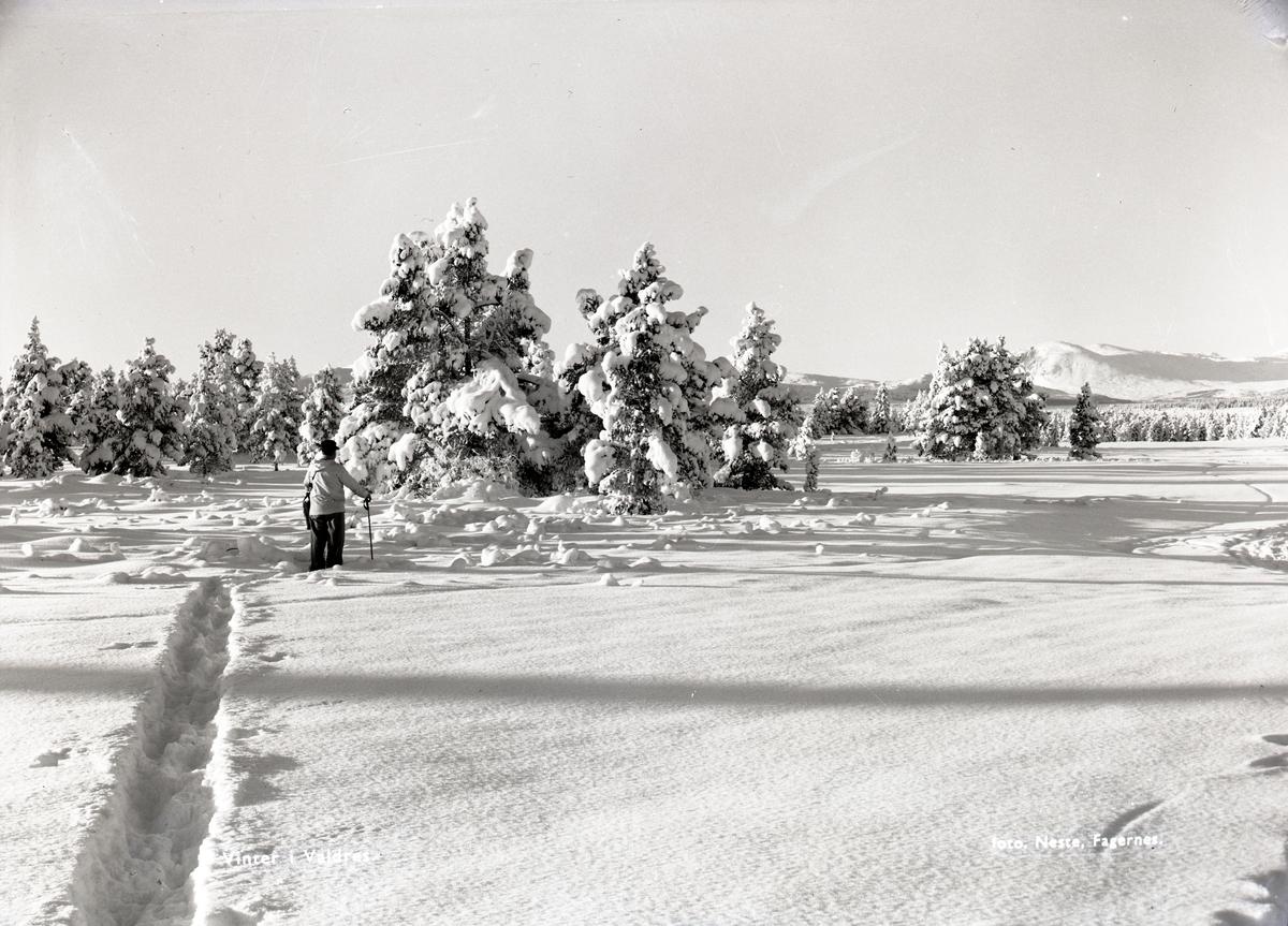 Sanderstølen, Tisleidalen, Nord-Aurdal.