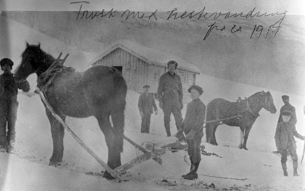 Systugu Bjorli m Vesl-stugu Trusking med hestevandring.  To hester og seks personer. Guttene antas å være Sigurd T. Bjorlis brødre Anton, Johannes og Trygve Bjorli.