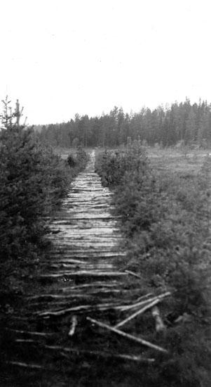 Kavelbro över Lehtolammsmyren mellan landsvägen och Kylla, Blindhanstorp