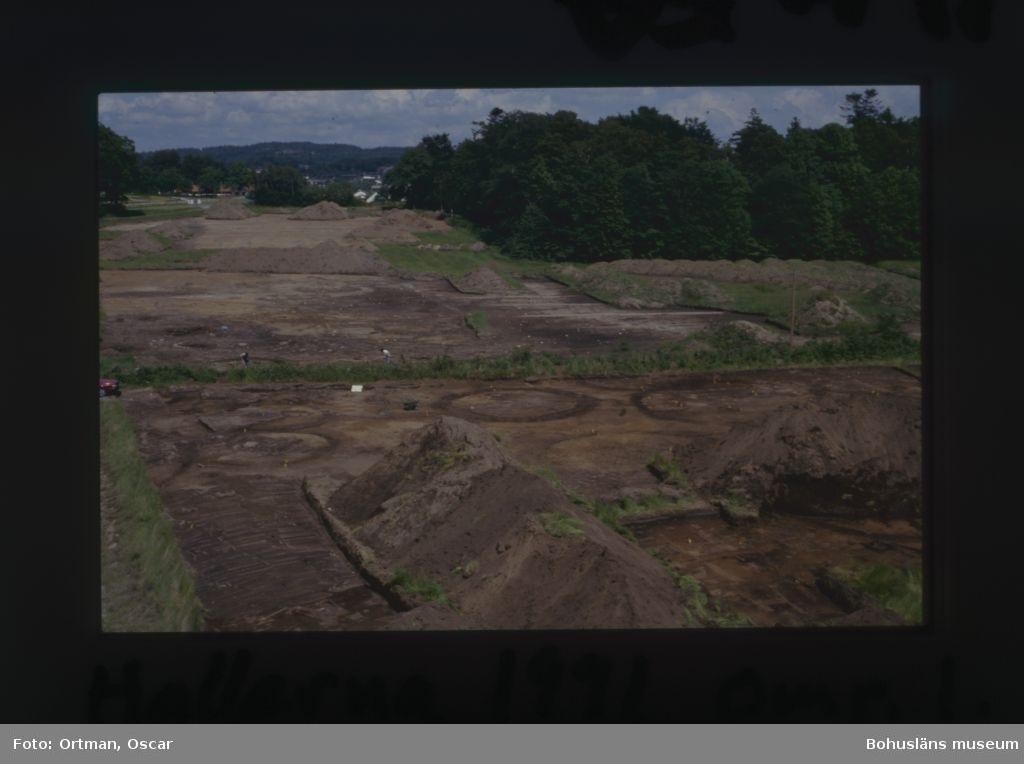 Norum 159 den västra delen av gravfältet med  A 583 i väster och A 625 i väster. Områe A i bakgrunden Fotograferat från sydväst Fotograferat från sydväst