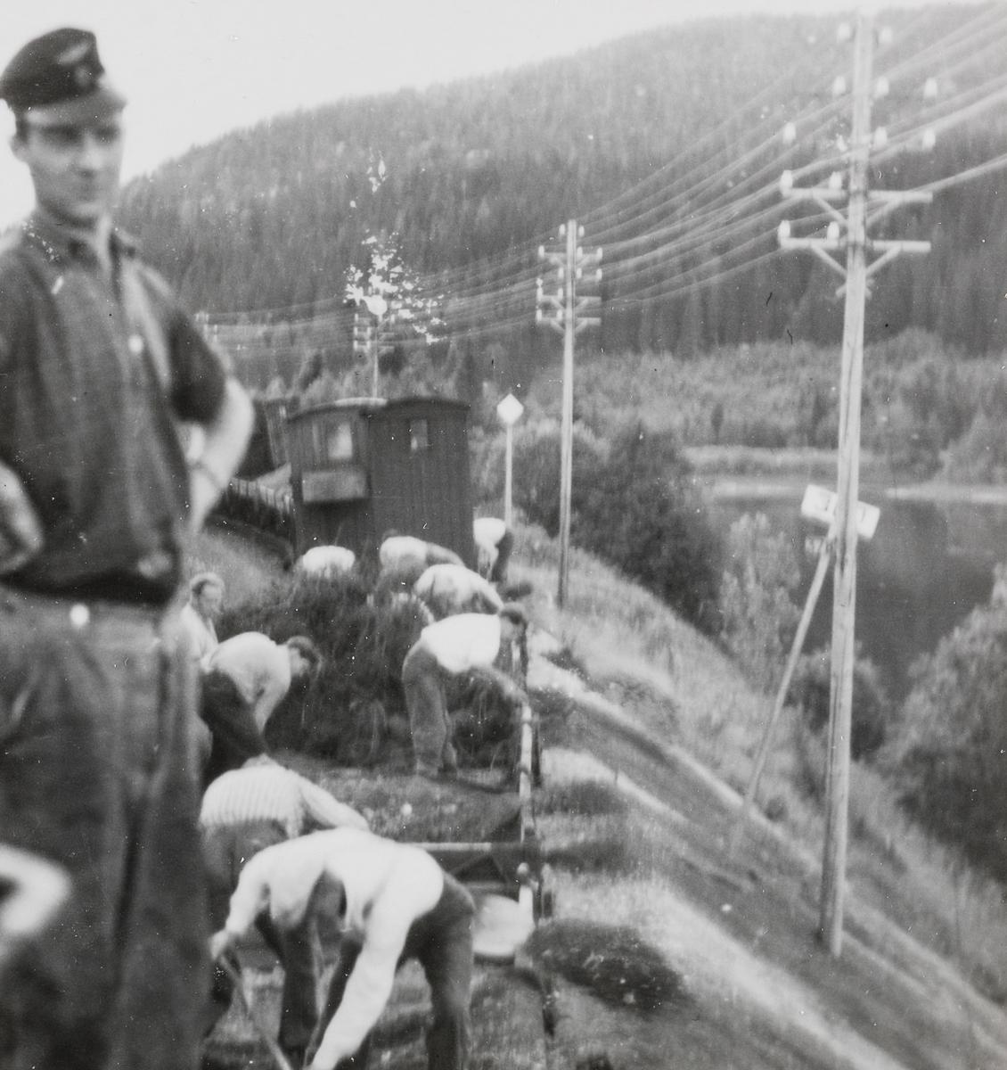 Banearbeid på Nordlandsbanen i nærheten av Sefrivatn, mellom Grong og Mosjøen. Avlessing av grus.