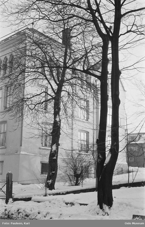 villa, hage, gjerde, snø
