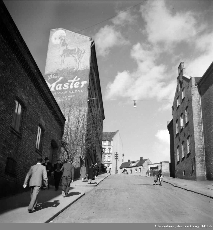 Enerhaugen. Enerhaugkleiva. Mars 1963