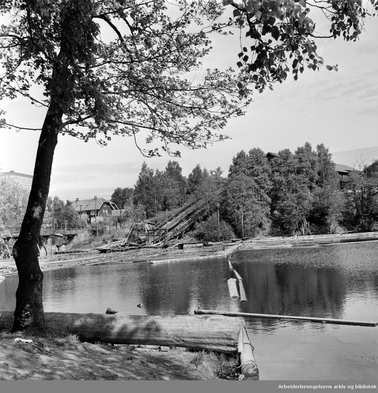 Brekke. Brekkedammen. Nydalen. Juni 1962