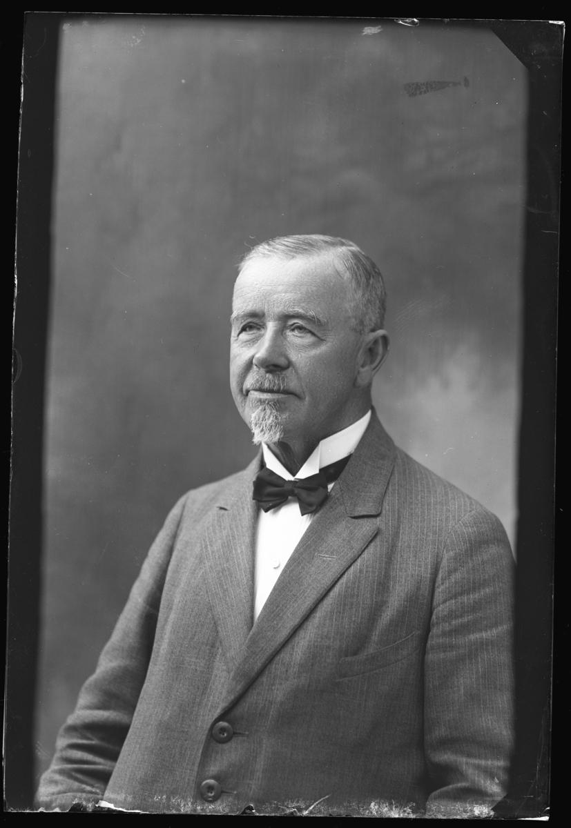 Godsägare N. J. Johansson