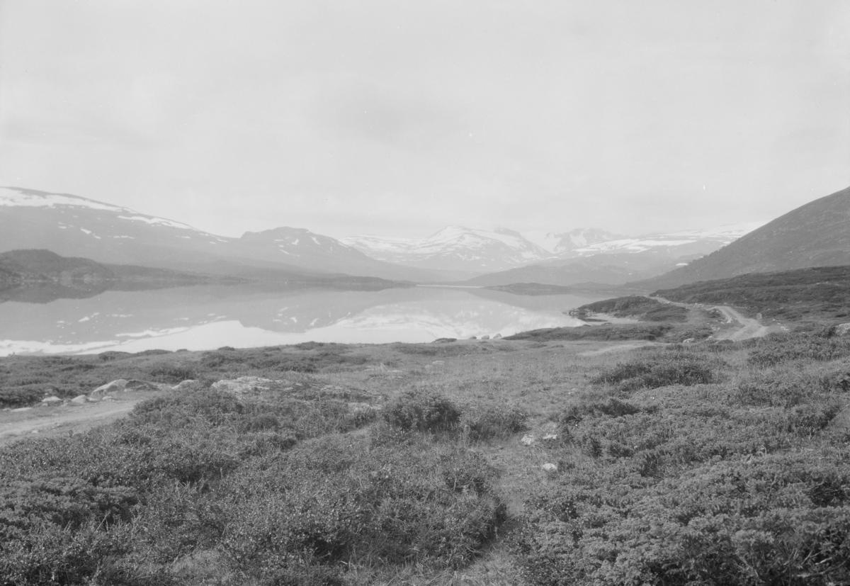 Øvre Sjodalsvatnet med bilveg langs vannkanten. Tatt mot sør