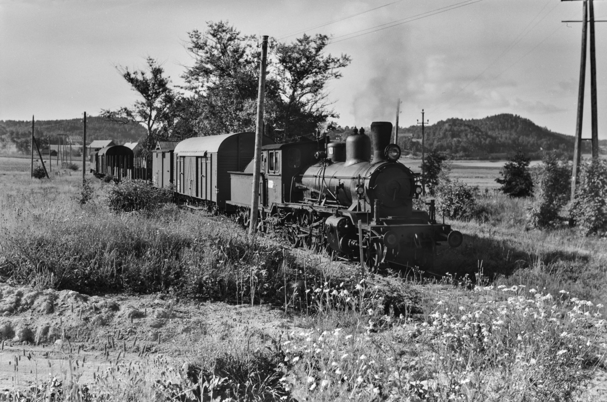 Godstog ved Lia holdeplass på Grimstadbanen. Toget trekkes av damplokomotiv type 21c nr. 373.