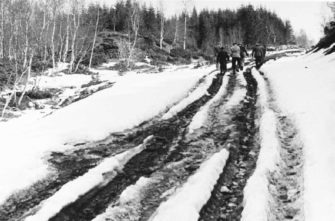 Leirfjord, Hopaenget, (Hjartland). Hjartlandsvegen under anlegg, befaring av formannskap og arbeidsformidling. Bildet er brukt i Leirfjordkalenderen - mars 2020