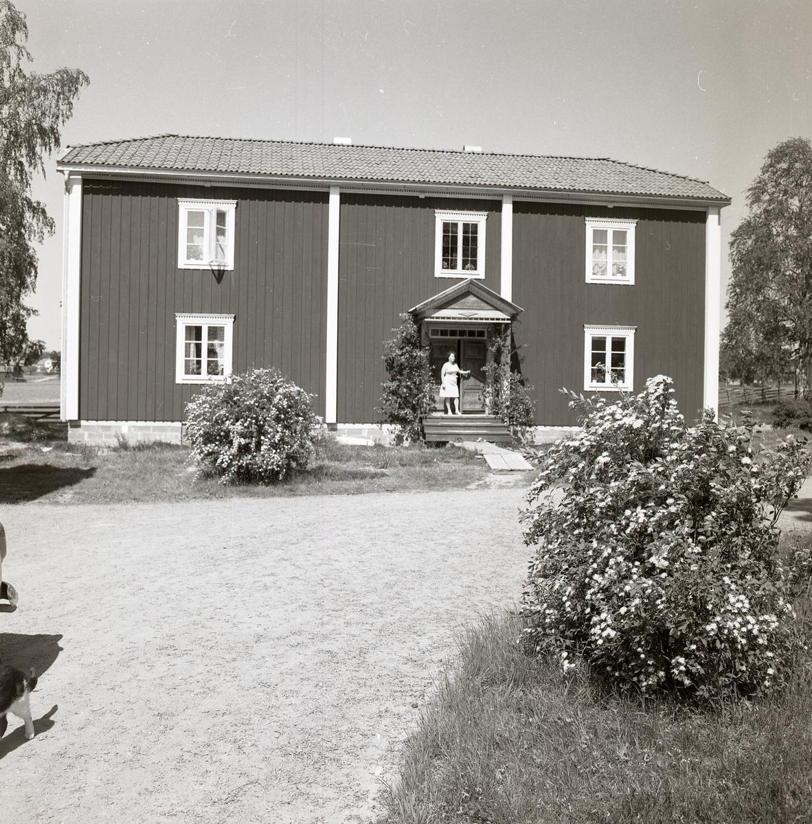Bostadshuset på gården Sunnanåker under sommaren 1969. En kvinna står på förstukvisten.