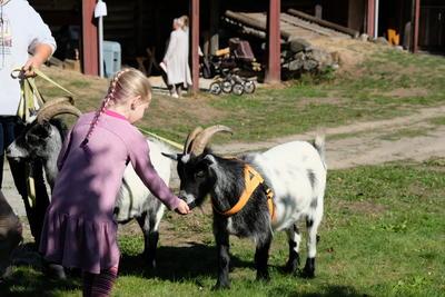 Barnas gård på Folkenborg