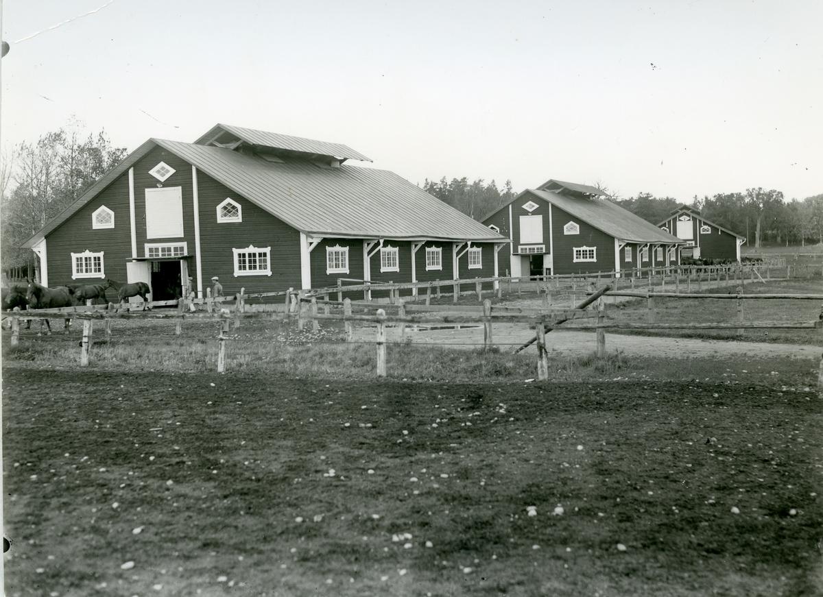 Kolbäck sn, Strömsholm, Utnäslöt. Stallar, hästar, män.