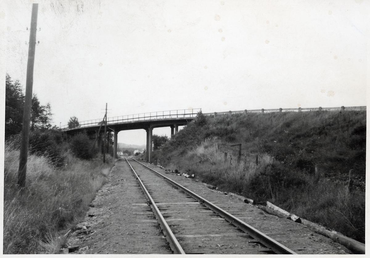 Linjen mellan Björketorp och Berghem.