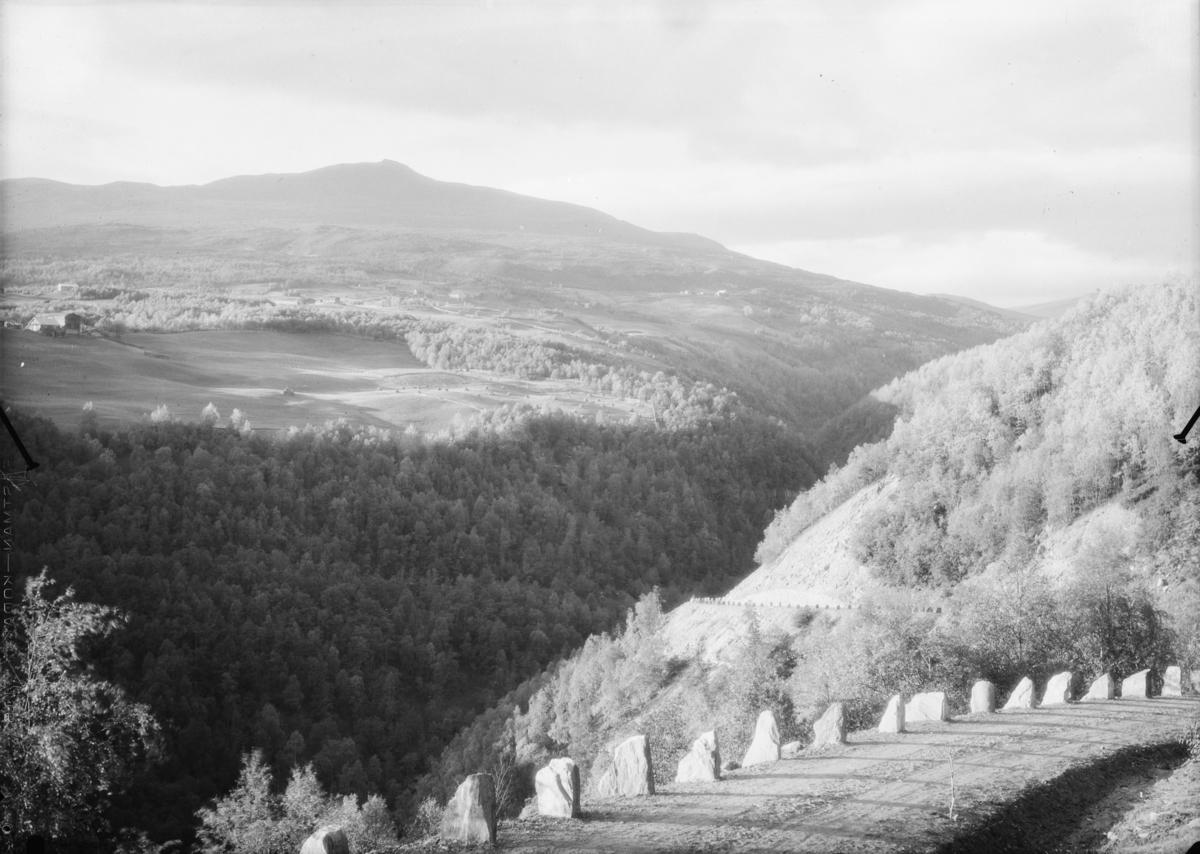 Vågå, utsikt fra veg ved Skjervegjeldet med utsikt mot Skårvangen.