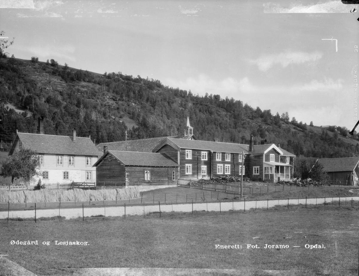 Øygarden mellom Bjorli og Lesjaskog