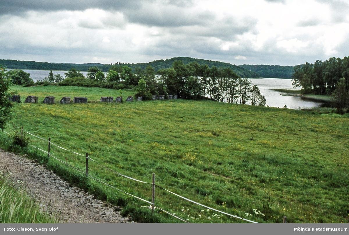 Stridsvagnshinder vid Helenedal i Mölndal, juni 2001. I bakgrunden ses Rådasjön. Stridsvagnshindren är numera borttagna. D 38:32.