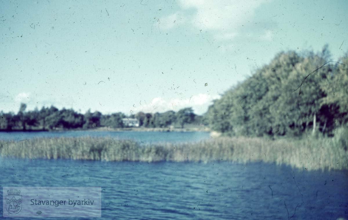 Mosvatnet.Mosvannsparken