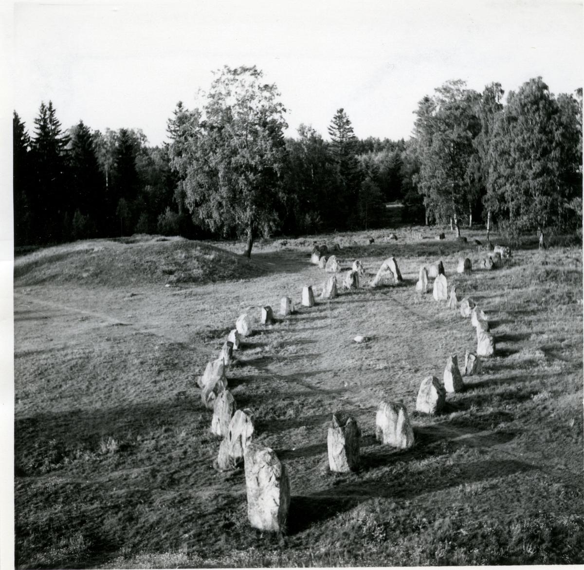 Badelunda sn, Anundshögsområdet, Långby. Stora skeppssättningarna.