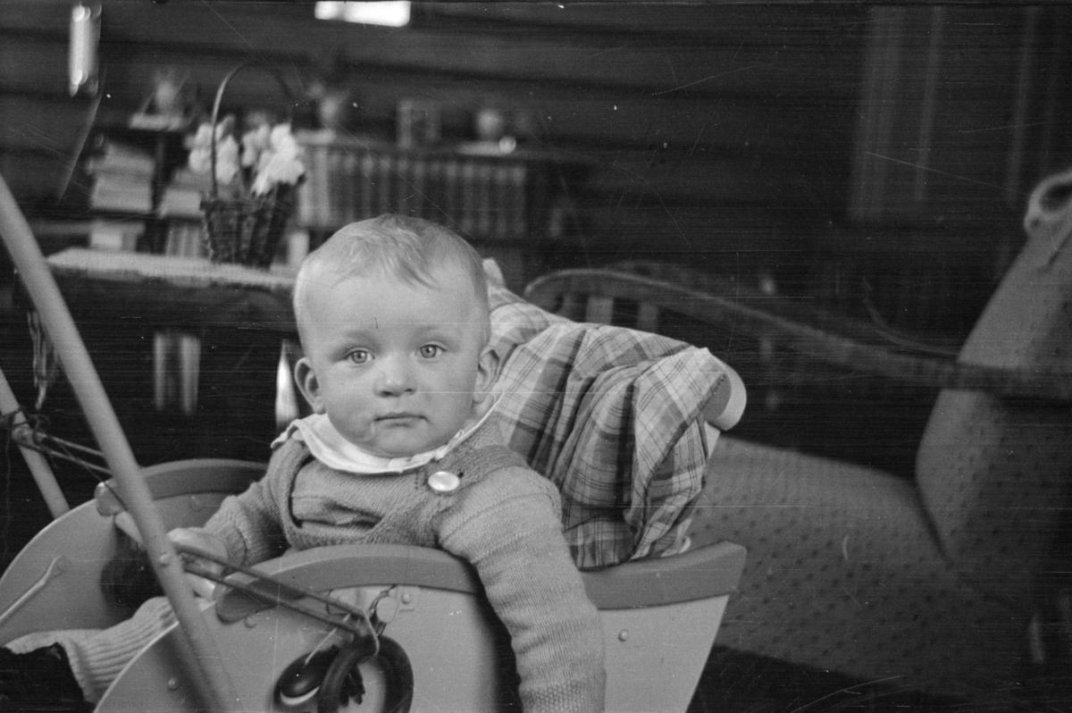 Barn i barnevogn, Ivar Wold jr?