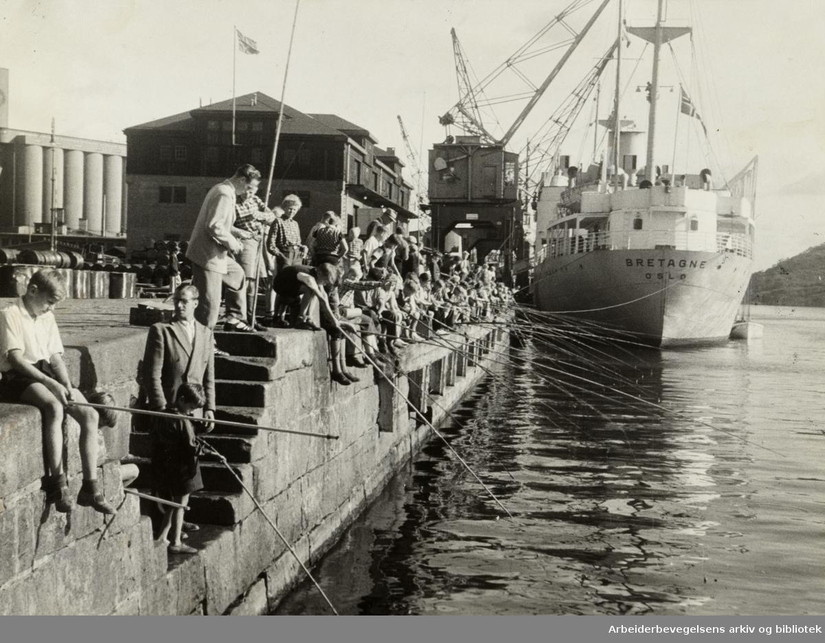 Havna. Bryggefiskere. August 1946