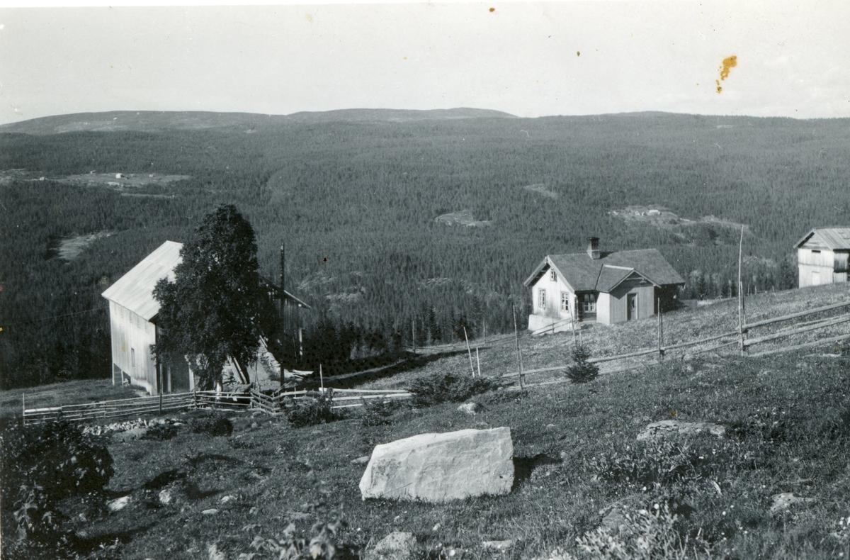 Stuveset ca.1946
