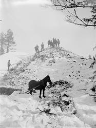 Män och häst i skog, Riddarhyttan.