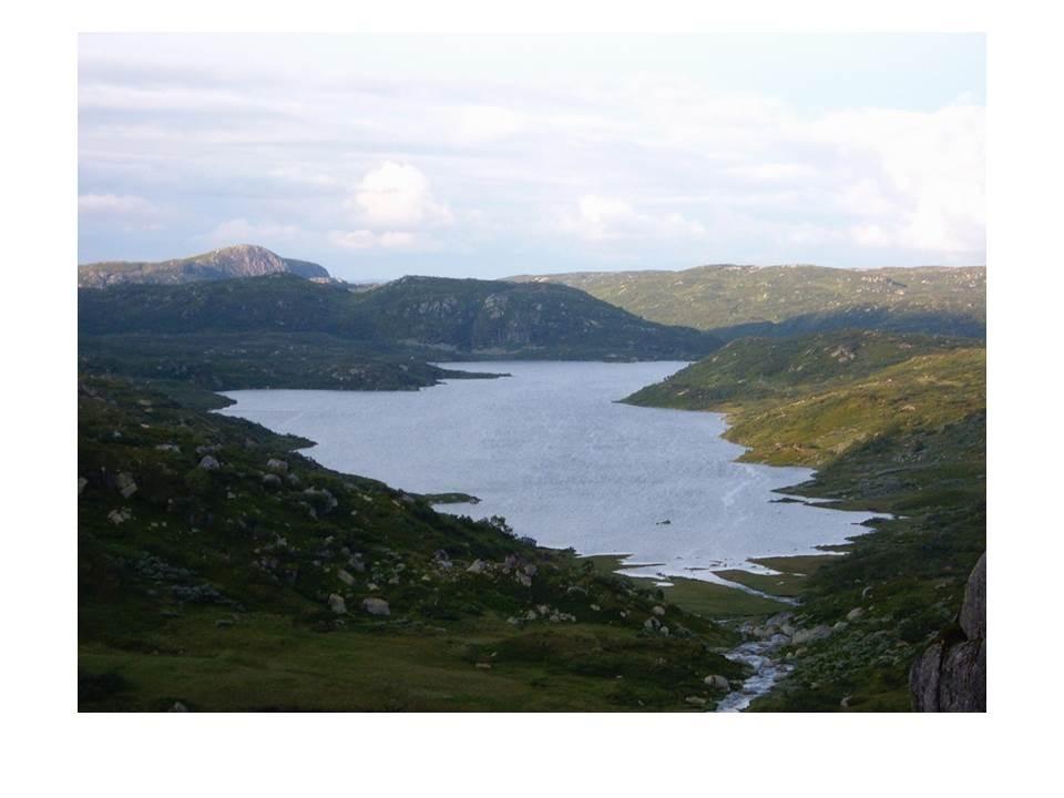 Lykkjevatnet i Langeidsheia med Fagervassnuten bak til venstre. Asbjørn Haga har gjerde rett over tangen til venstre for samling av sauer på hausten.