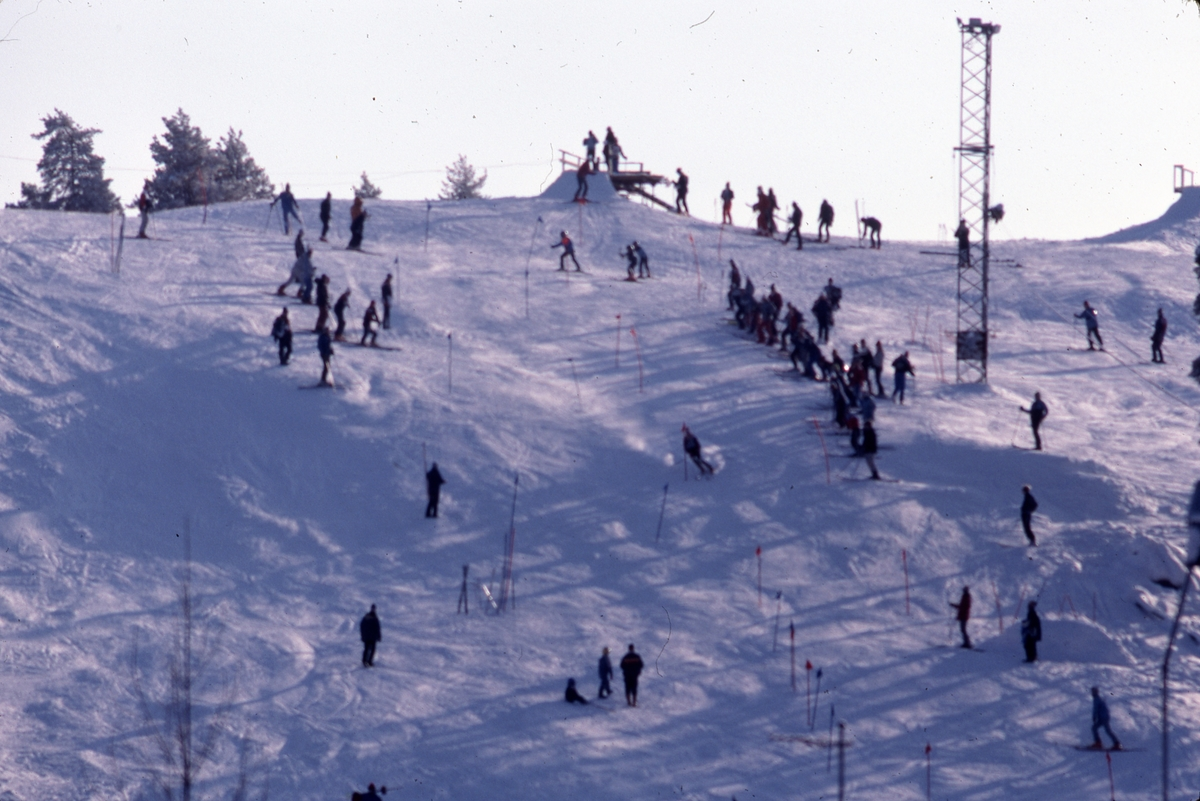 Slalomåkare i Teknikbacken