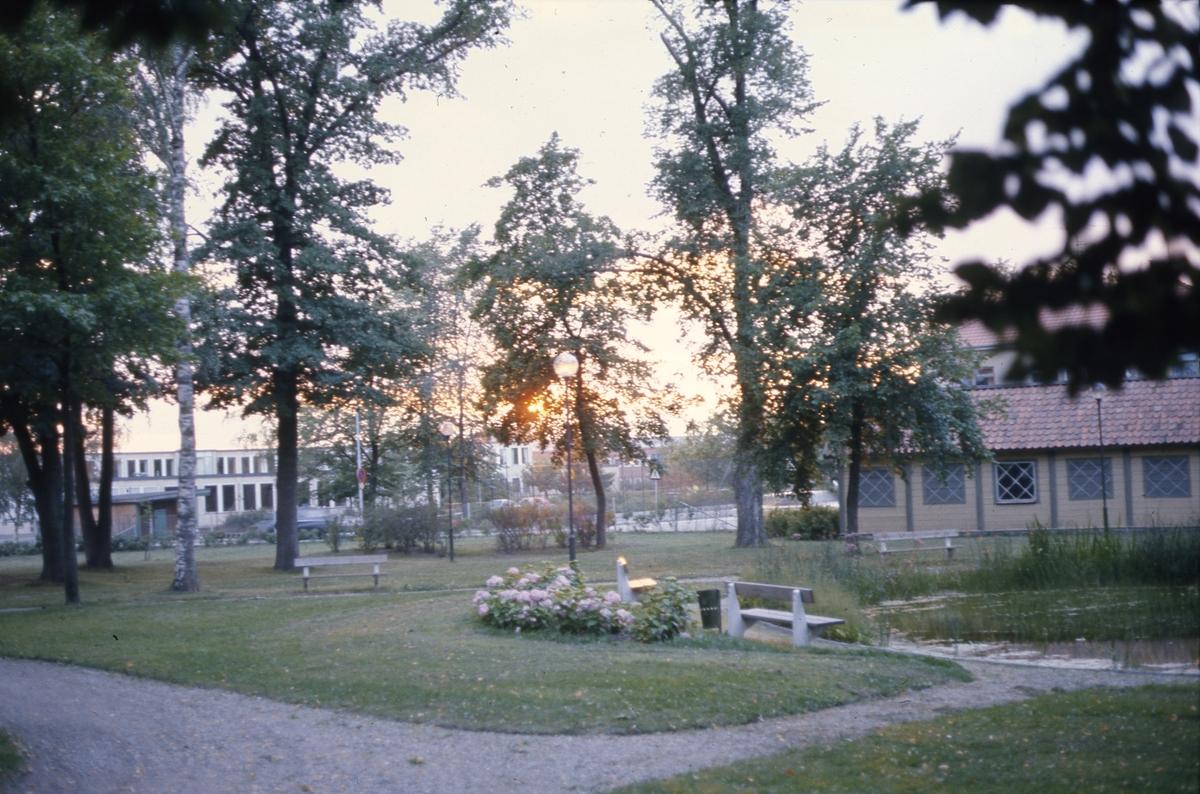 Olof Ahllöfs park med dammen och kägelbanan. I bakgrunden syns Stureskolan.