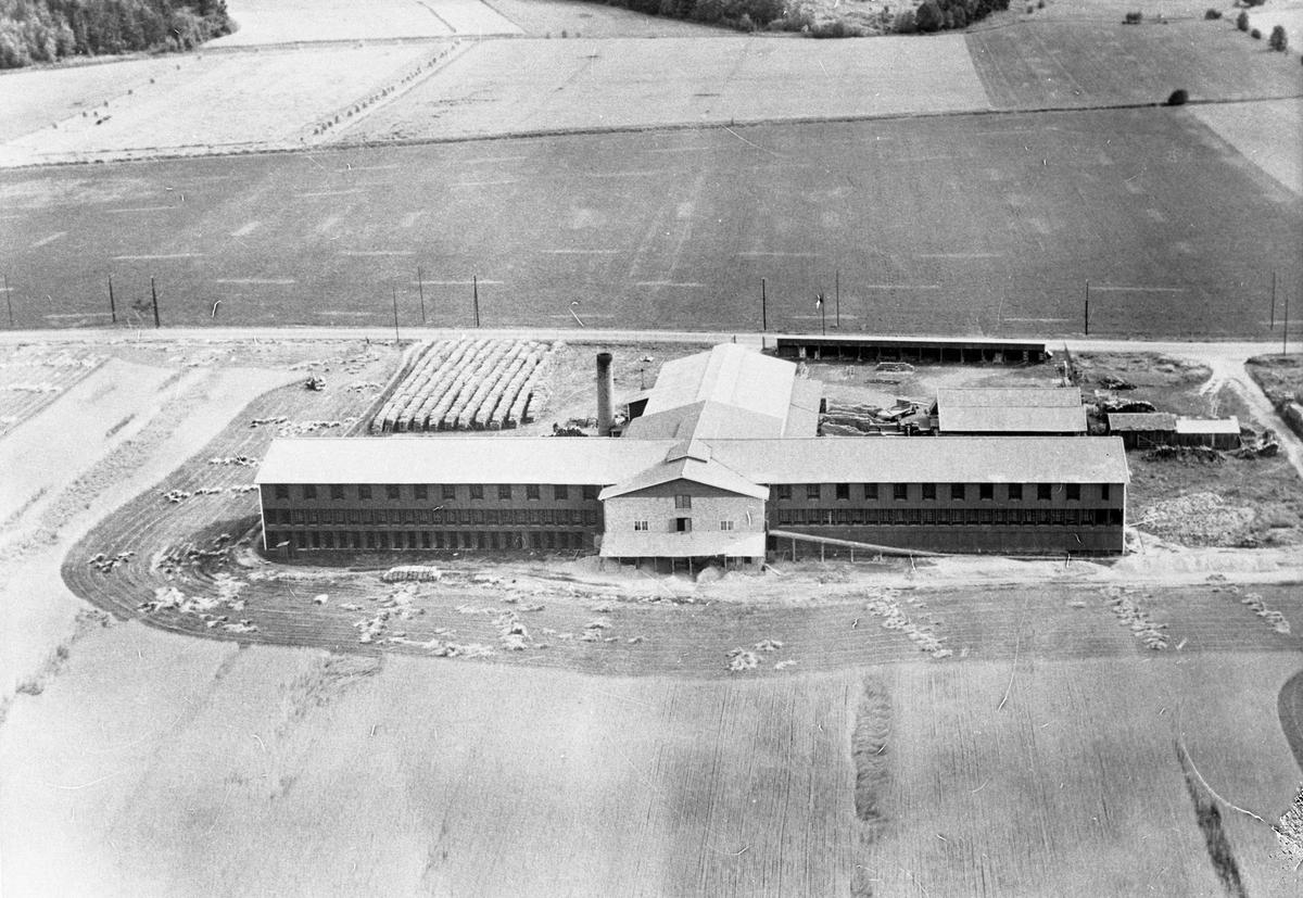 Arboga Tegelbruk, exteriör, flygfoto. Anläggningen med byggnader och hög skorsten, intill Kungsörsvägen. Åkermark omkring.  Arboga Tegelverk AB grundades 1882 och låg söder om Trädgårdsgatan och väster om Gäddgården. Företaget bytte namn till Arboga Tegelbruk 1890. Tegelbruket levererade murtegel till bland annat Arboga Bryggeri och Arboga Margarinfabrik, mycket skeppades till Stockholm. År 1938 flyttades verksamheten till området Stenlöpet. Teglet transporteras nu med lastbil. En omfattande brand, 1940, orsakade stopp i produktionen. Anläggningen byggdes upp och var snart igång igen.Tegelbruket lades ner på hösten 1970. Anläggningen eldhärjades 1971 och hela bruket lades i aska.  Läs om Arboga Tegelbruk i Hembygdsföreningens Arboga Minnes Årsbok 1999, varifrån ovanstående är hämtat.