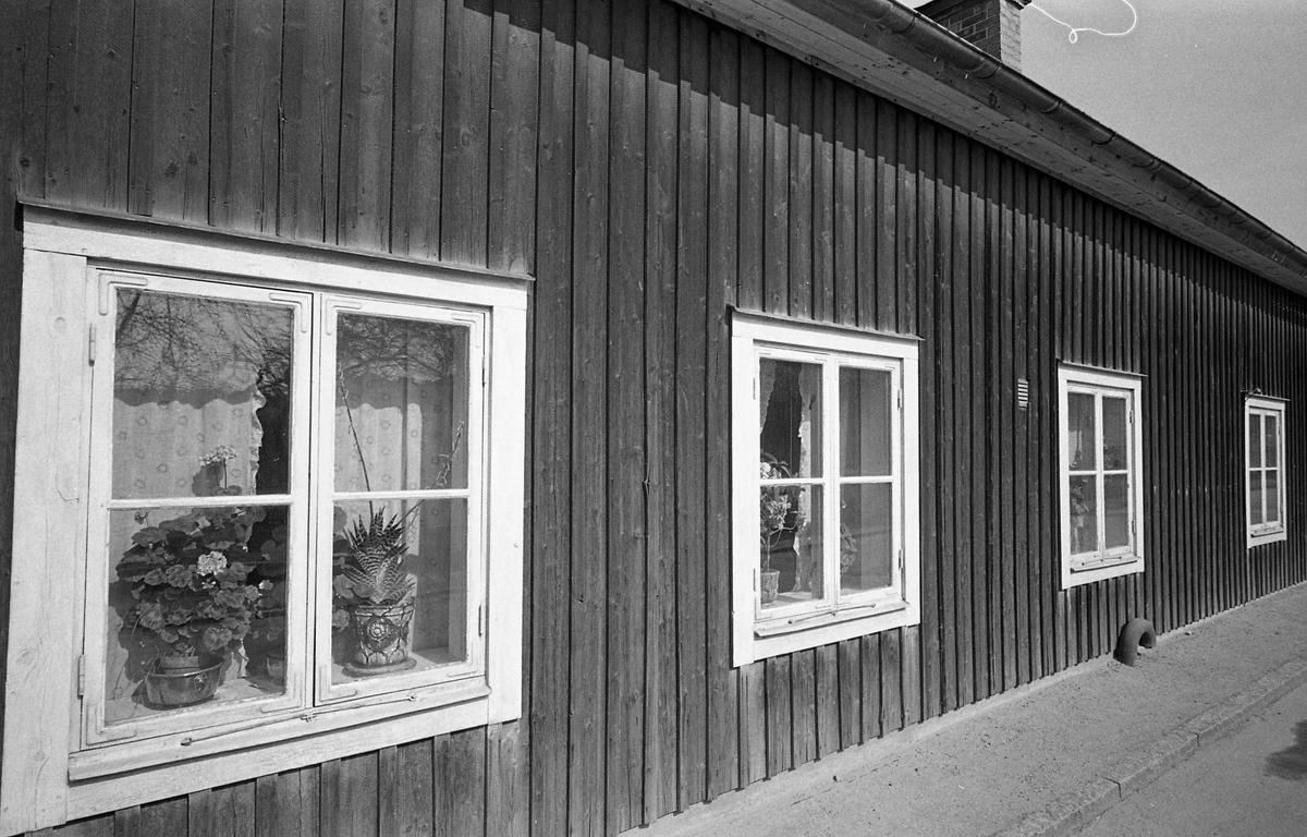 Exteriör av bostadshus, enplans, träfasad. Blommor i fönstren. Fotografens anteckning: Dokumentation av fastigheter i kvarteren söder och norr om ån. Bilder och beskrivning finns på Arboga Museum. Äldre bebyggelse. Bostadsmiljö.
