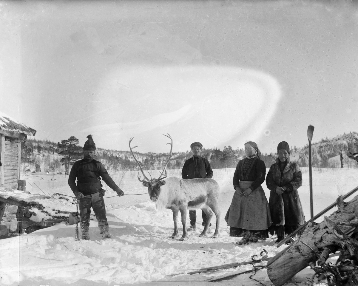 Fra Utstuggugjøldalen. Lars Jonsen til venstre. Til høyre Sigrid Jonsen og Brita Bergli.  Mannen bak reinen er ukjent.