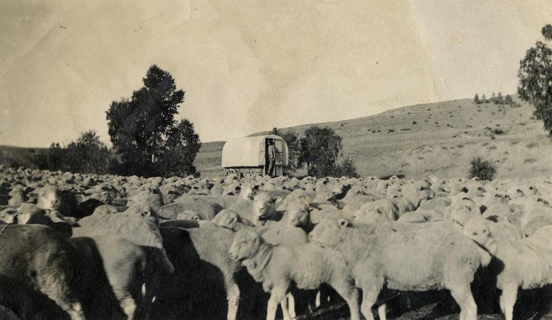 Lende i Montana