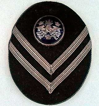 Oval mössplåt av metall, klädd med svart kläde. Två 5 mm silvergalon i vinkel, under blåemaljerad mössknapp med vinghjul och tre kronor. Märket är kantat med silverfärgad snodd.