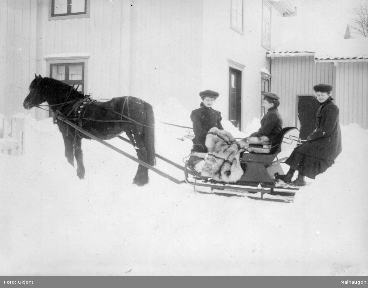 Repro: Gårdsplass med hest med spisslede, tre damer.