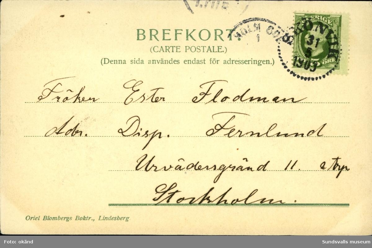 Vykort med motiv från Frölandsbodarna vid Indalsälven.