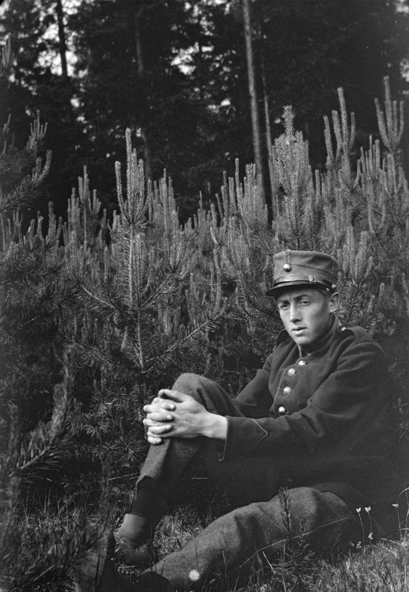Soldat med unge furutrær bak.