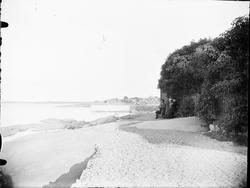 Vy över strand och klippor vid Öregrund, Uppland 1890-tal