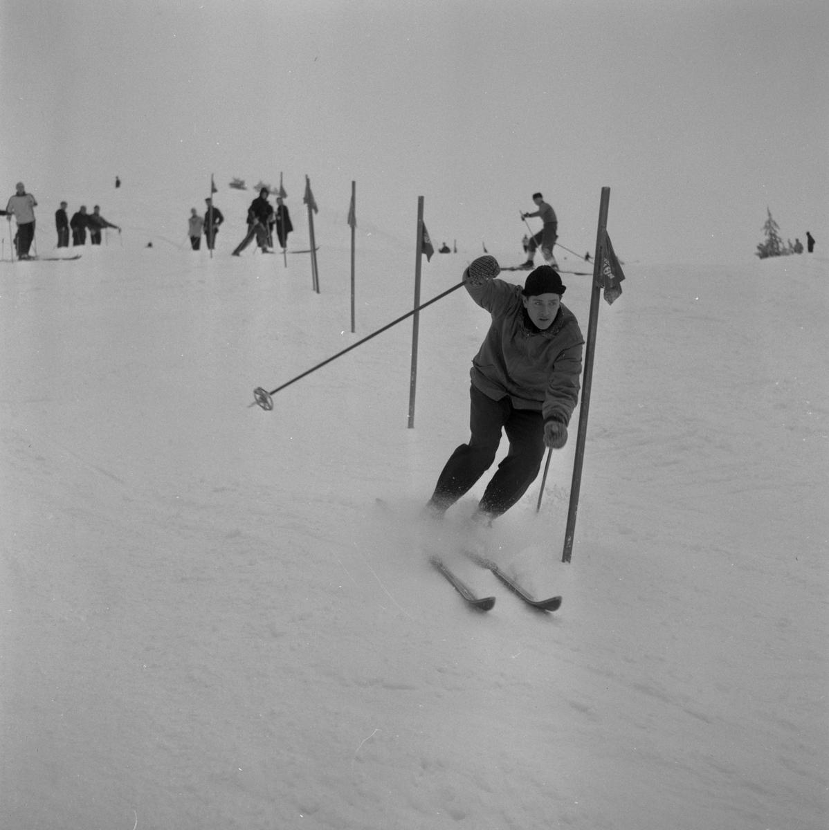 Bilder från Ånnaboda.  19 januari 1959.