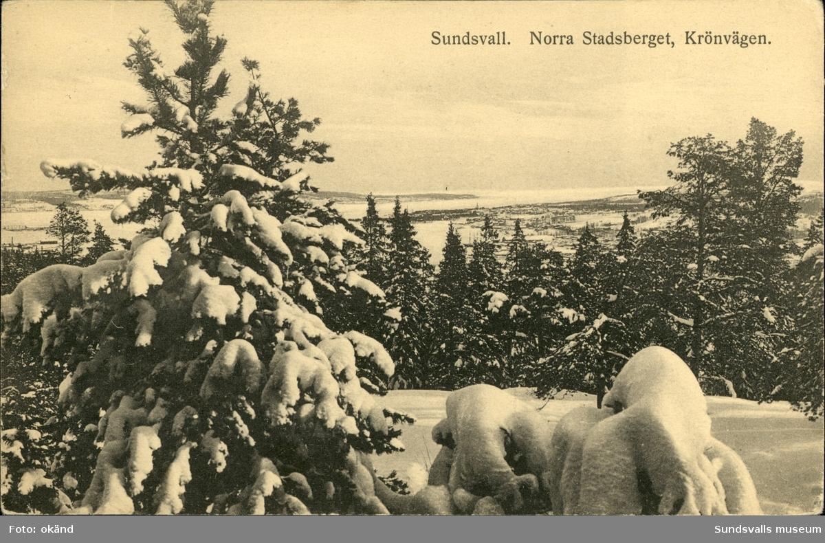 Vykort med motiv över Sundsvall från Krönvägen.