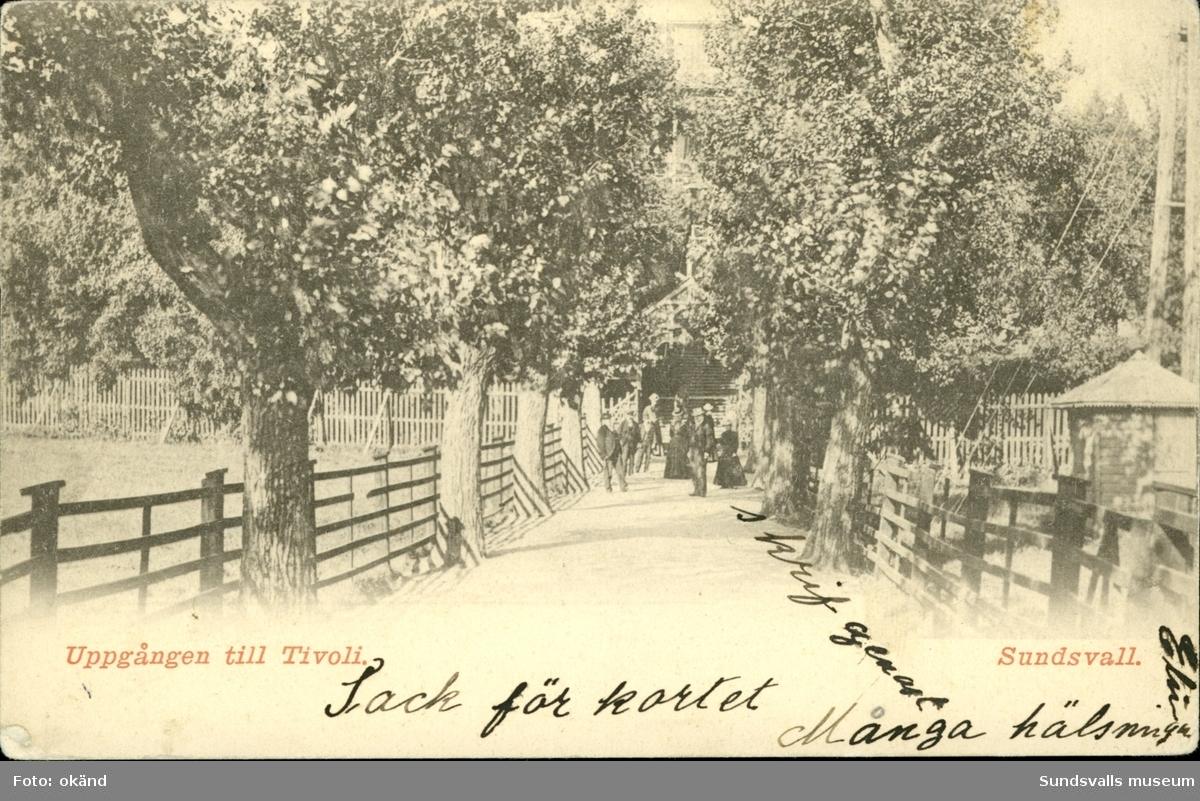 Vykort med motiv över ingången till Tivoli i Sundsvall.