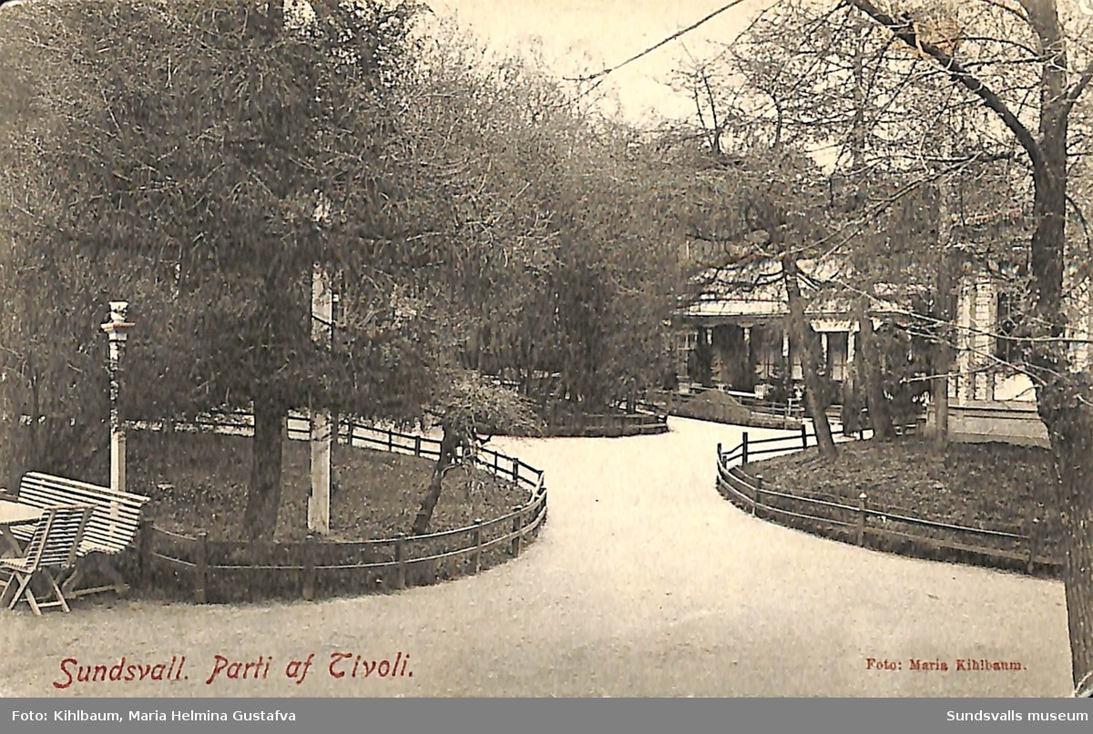 Vykort med motiv över parti av Tivoli i Sundsvall.