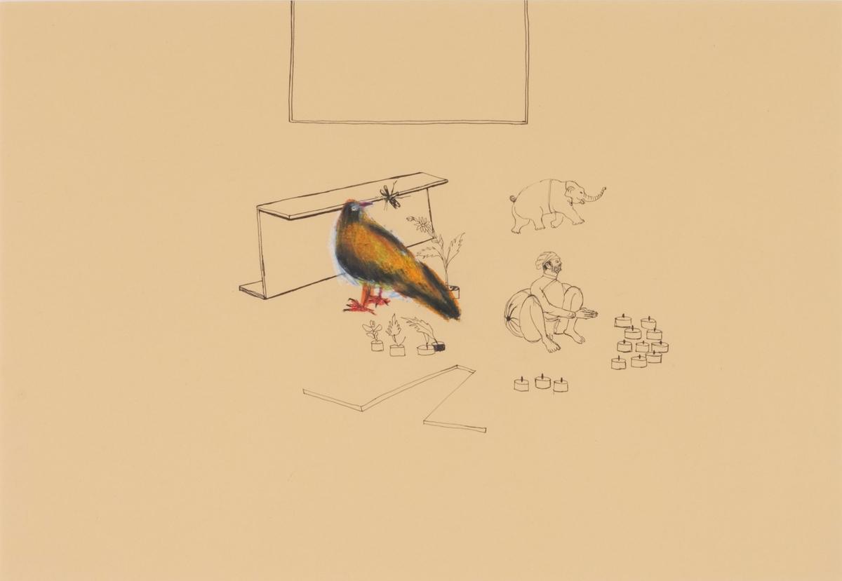 Fugl [Tegning]