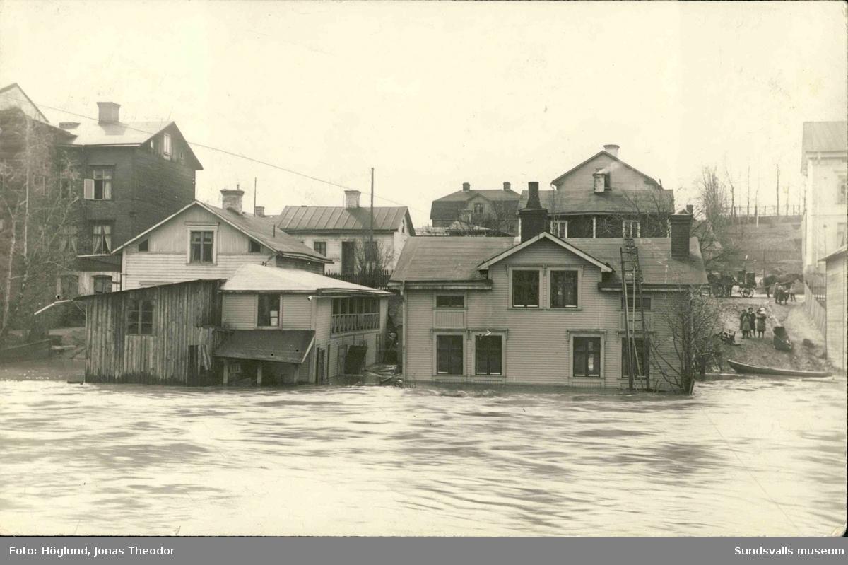 Vykort med motiv av vattennivån i Selångersån vid översvämningarna 1919.
