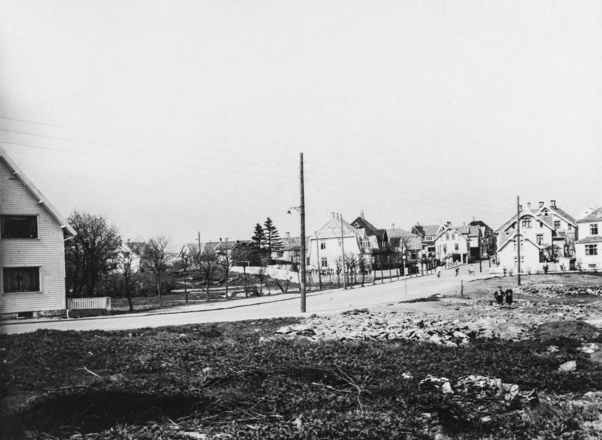 Flotmyr - Skjoldavegen sett mot nordøst, ca. 1950.